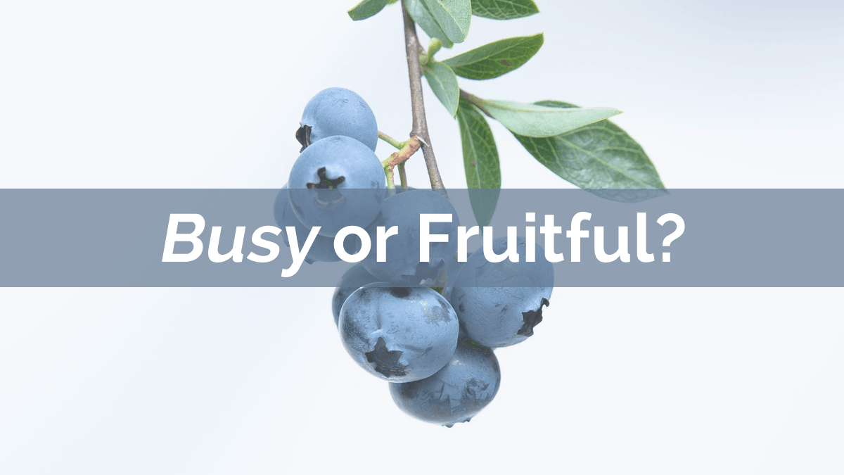Busy or Fruitful?